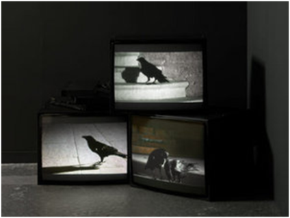Douglas Gordon, Looking Down With His Black, Black Ee, 2008.
