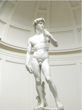 Michelangelo, David, 1501-1504. Marmo di Carrara, 516 x200 cm. Academia di Belle Arti, Firenze.