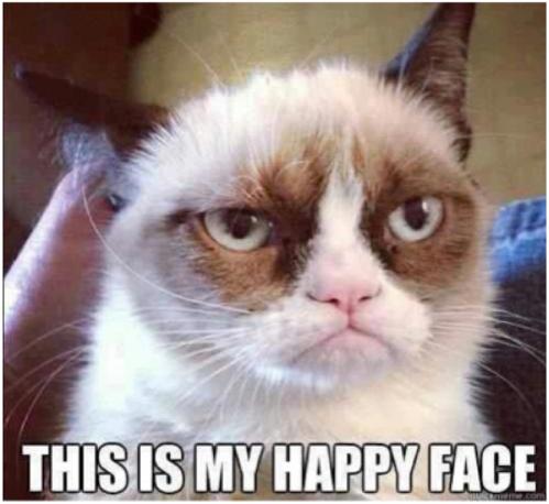 Grumpy Cat 乖戾的猫
